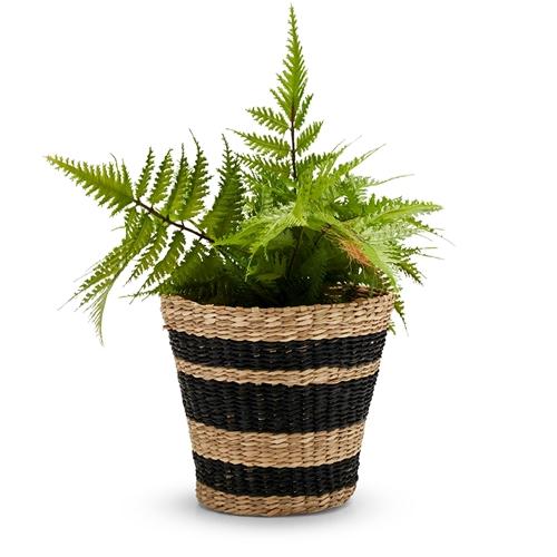 S&P seagrass basket planter